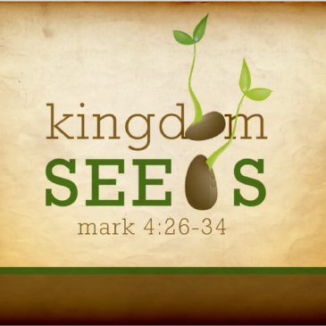 Kingdom Seeds