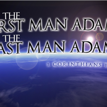 The Last Man Adam Continued 7.27.14