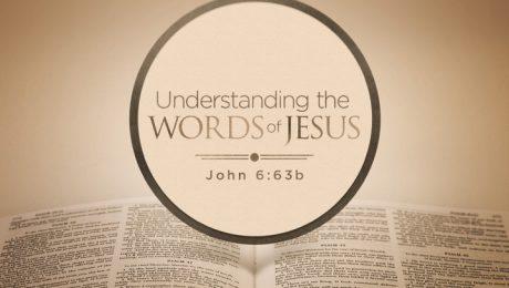 Understanding the WORDS of JESUS 2 2 copy.001