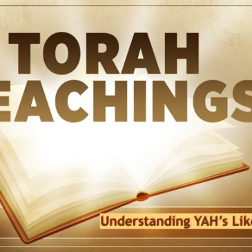 Torah Teachings – Mishpatim Part 1